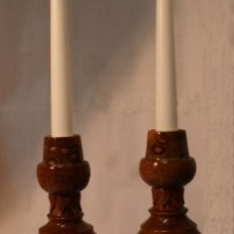 phoca_thumb_l_banksia-candles1